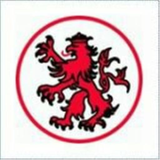 TSG 1888 Nieder-Erlenbach icon