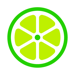 Lime - Your Ride Anytime