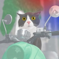 Codes for Cat Moped Hack