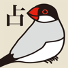 Noriyoshi NAMBO - 文鳥点取り占い for iPhone アートワーク