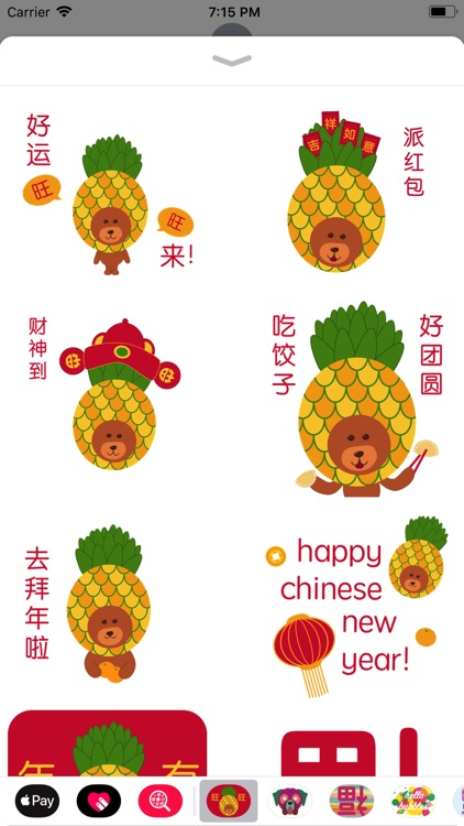Wang Wang Chinese New Year