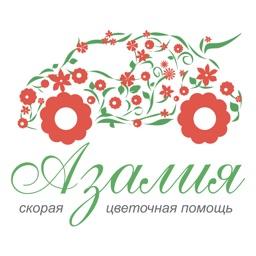 Азалия | Russia