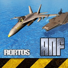 Activities of Air Navy Fighters