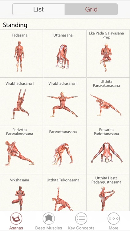 3D Yoga Anatomy screenshot-3