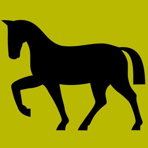 3Strike Horses