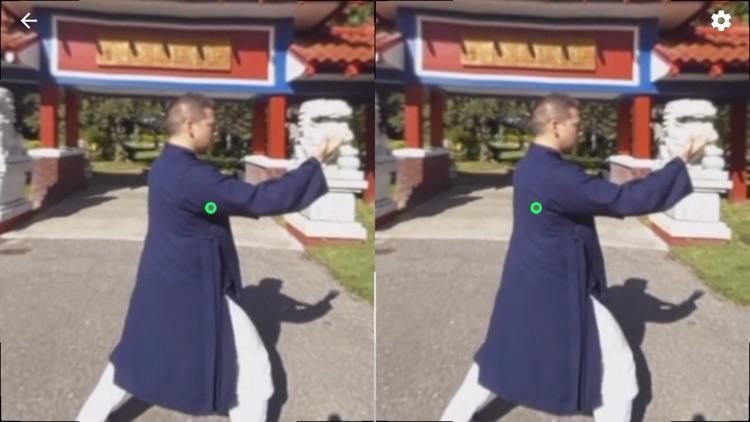 Tai Chi Trainer XR screenshot-3
