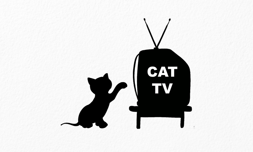cat tv the ultimate tv for cats on the app store