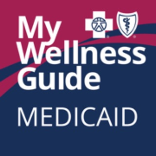 My Wellness Guide Empire Blue