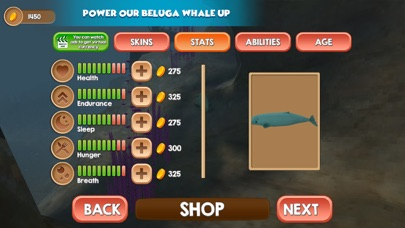 Beluga Whale Simulator screenshot three