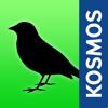 Vögel Europas bestimmen