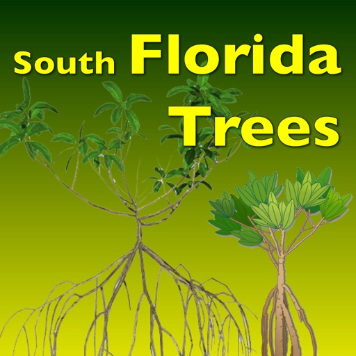 Southern Florida Trees