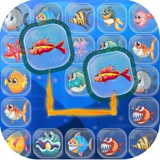 Activities of Fish Connect