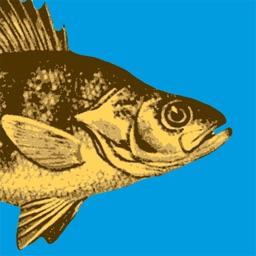 WI Fish ID