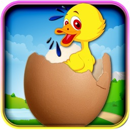 Crazy Eggshooter Duck Free