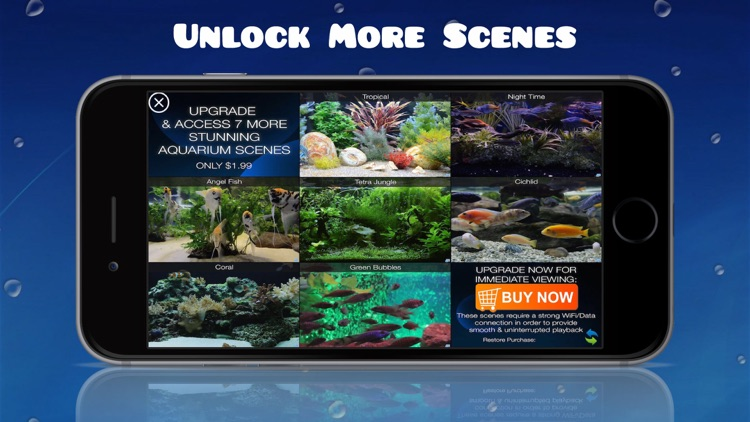 Aquarium HD : Fish Scenes