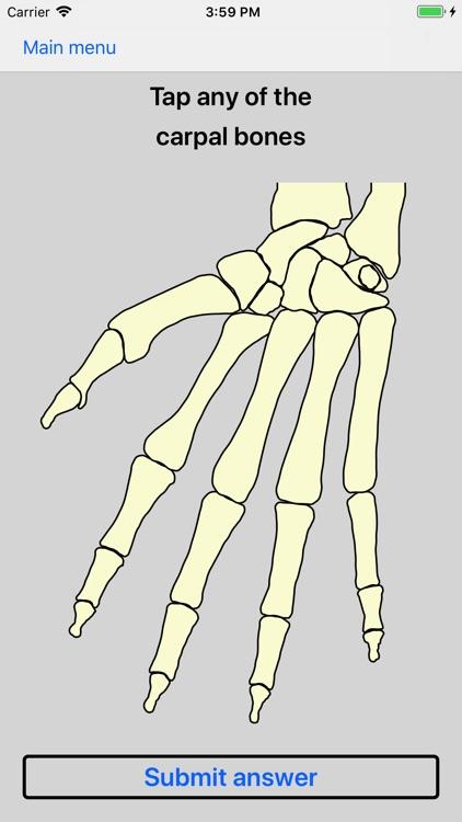 Bones of the body screenshot-0