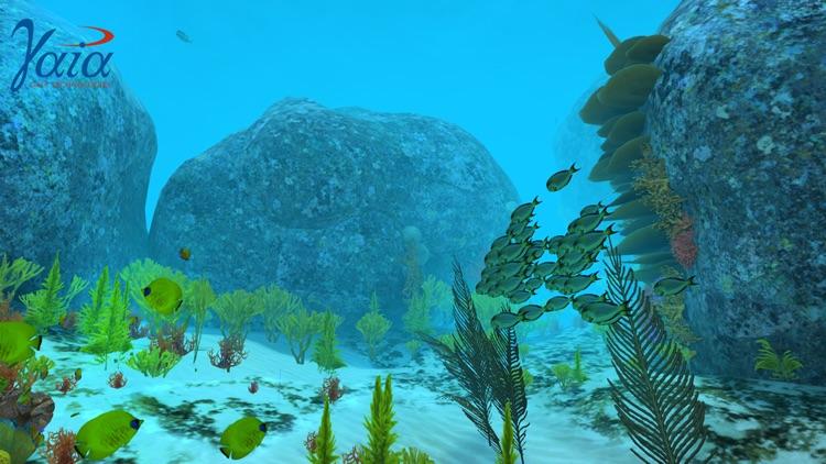 Coral Reef VR screenshot-3
