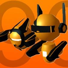 Activities of Mini Robo