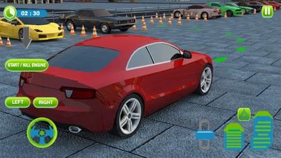 Real 3D Driving School - Pro Screenshot 1