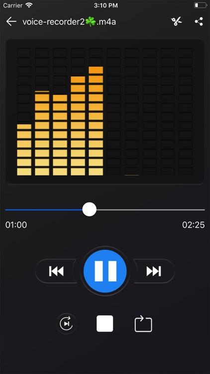 Voice recorder - Voz screenshot-3