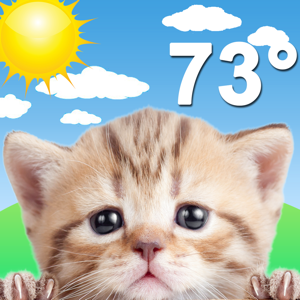 Weather Kitty: Forecast & Cats Weather app