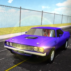Activities of Driving Extreme Muscle Car