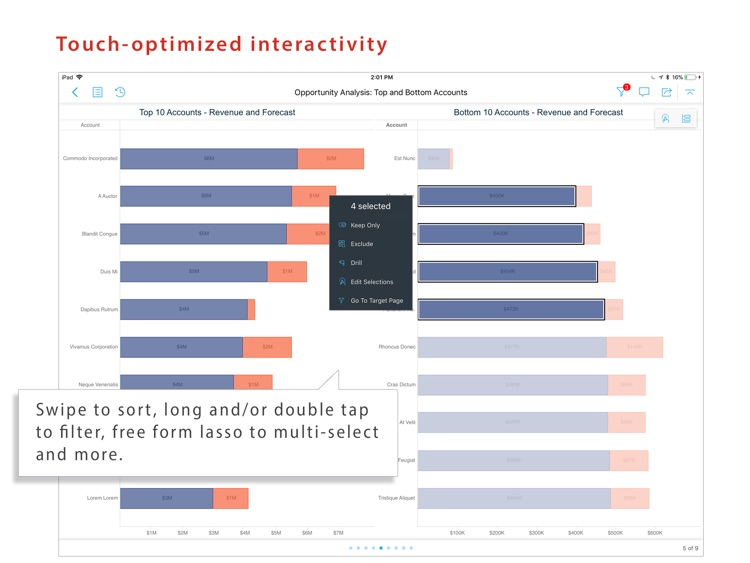 MicroStrategy Library for iPad