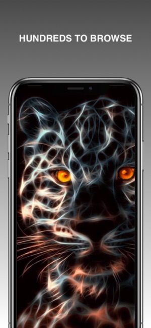 Neon Animal Wallpapers On The App Store