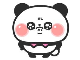 Panta is panda's boy