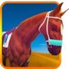 テキサス州の馬に乗っシム