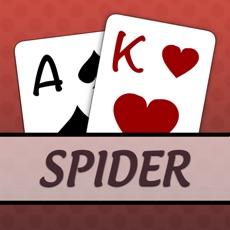 Activities of Spider Solitaire [Pokami]