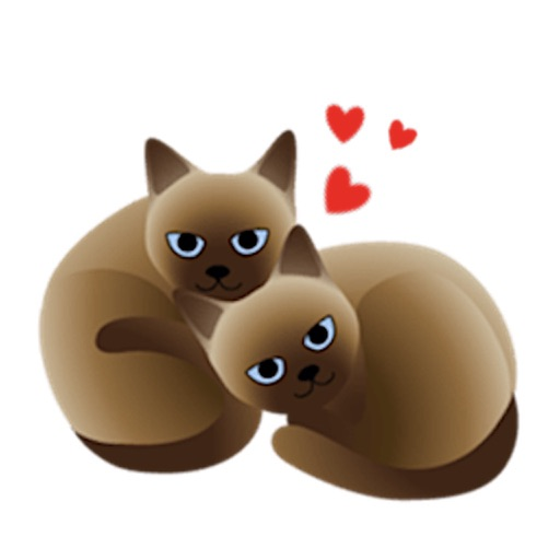 Sweet Siamese Cat Sticker