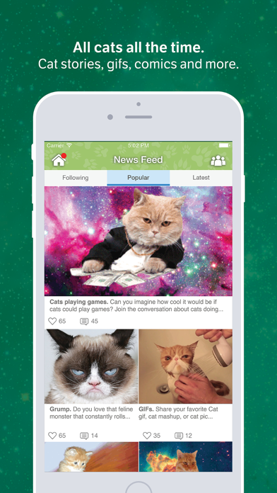 Amino for: Cats and Kittens screenshot one
