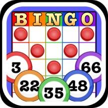 Totally Bingo! by Boy Howdy