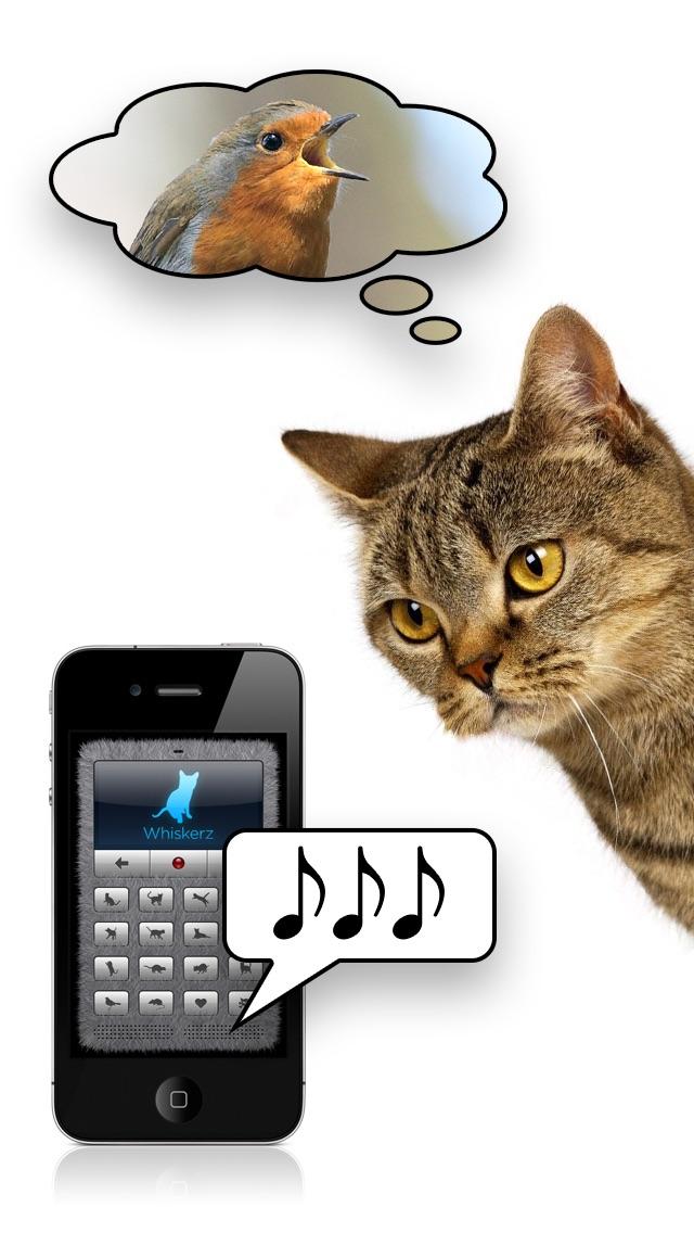 Screenshot #3 pour Traducteur en langage chat +