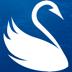 17.Swanfish