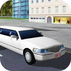 Activities of Real Limo Driving Traffic