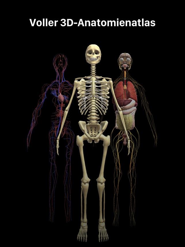 Menschlichen Körper Erforschen im App Store