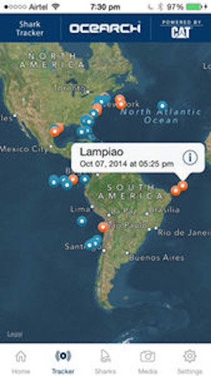 Global Shark Tracker on the App Store