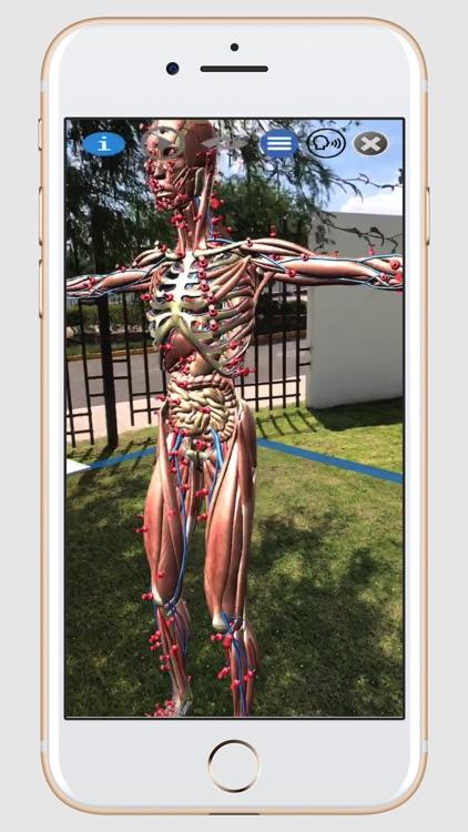 ARnatomy screenshot-4