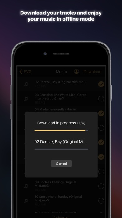 Equalizer+ Pro HD mus... screenshot1