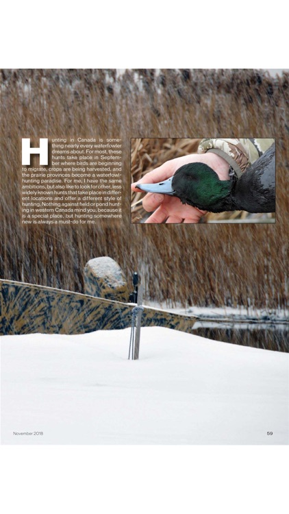 American Waterfowler screenshot-4