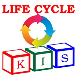 KIS Lifecycle