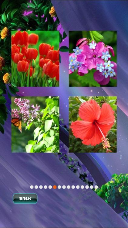 Spring Jigsaw Puzzles screenshot-3