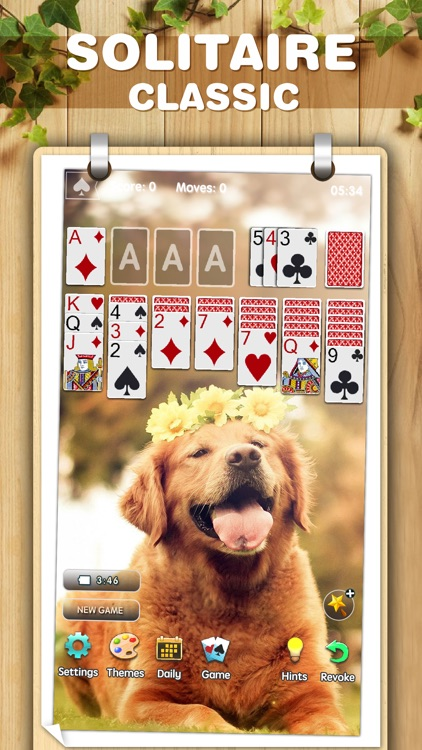 Solitaire Classic ◆ Card Game screenshot-3