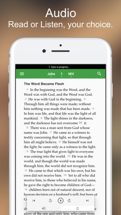 Niv Bible review screenshots