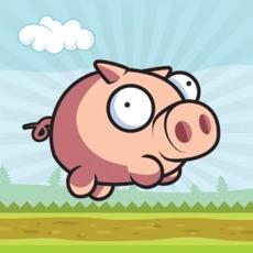 Activities of Run Porky