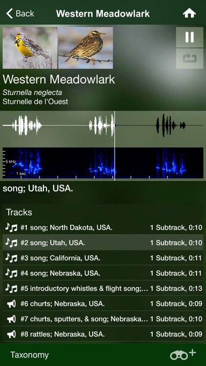 Bird Songs USA & Canada 3100 birds' songs + calls screenshot-3