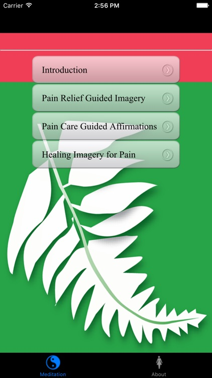 General Pain Management Guided Imagery