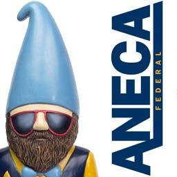 ANECA Federal Credit Union